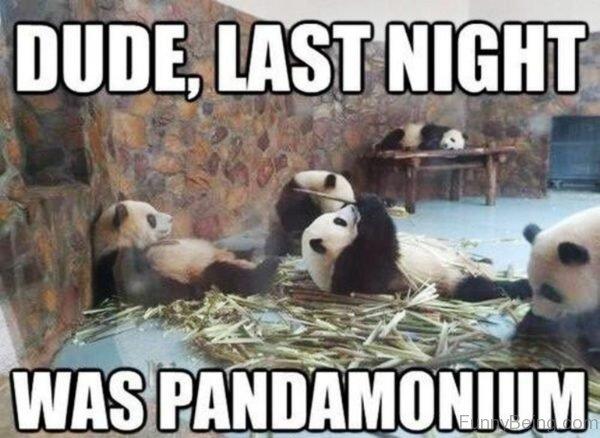 Dude Last Night