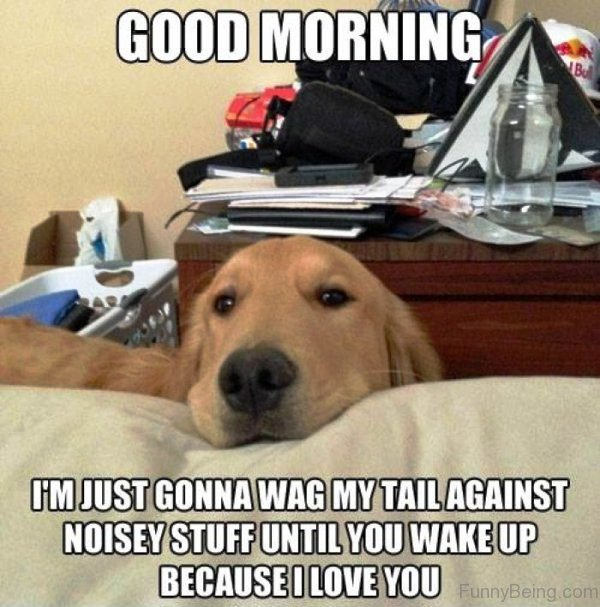 Good Morning Im Just Gonna Wag My Tail