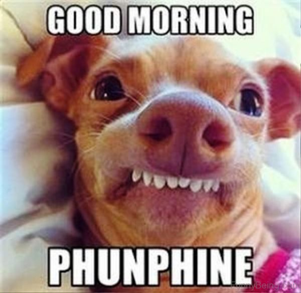 Good Morning Phunphine