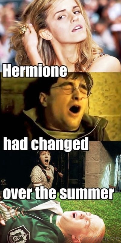 Hermione Had Changed Over The Summer