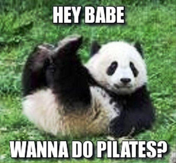 Hey Babe Wanna Do Pilates