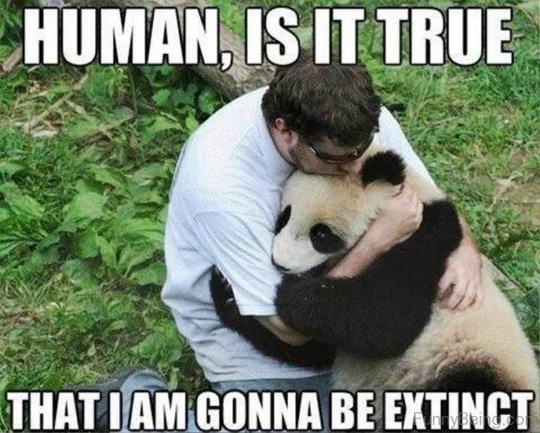 Human Is It True