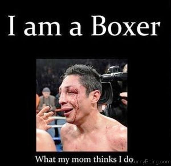 I Am A Boxer 600x580 70 boxing memes for you