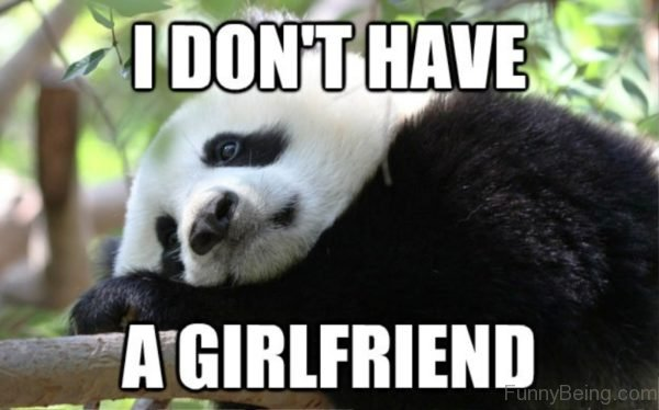 I Dont Have A Girlfriend
