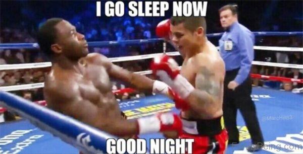 I Go Sleep Now