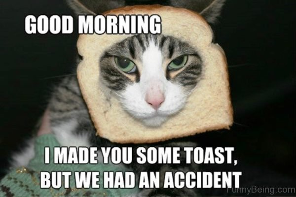 I Made You Some Toast