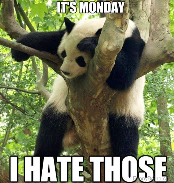 Its Monday I Hate Those