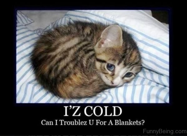 Iz Cold Can I Troublez You