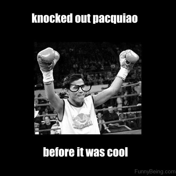Knocked Out Pacquiao 56 very funny boxing memes