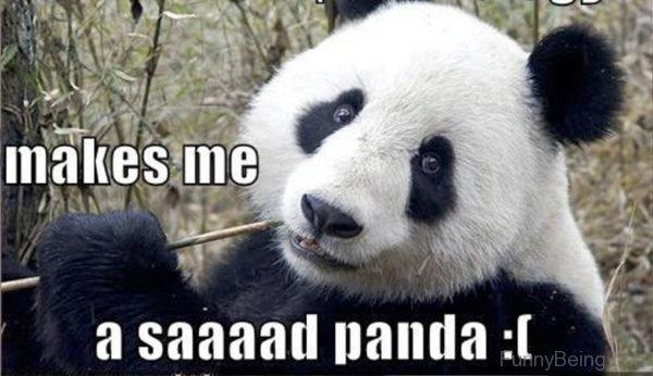 Makes Me A Saad Panda