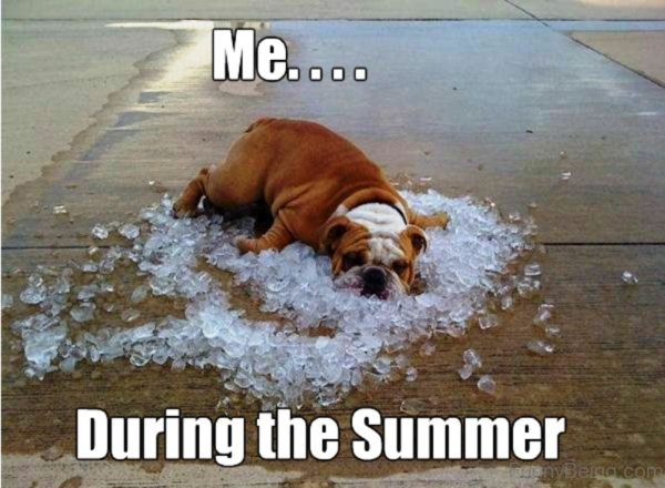 Me During The Summer