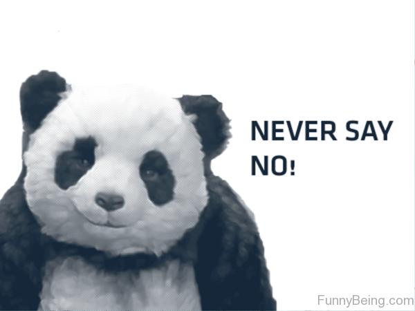 Never Say No