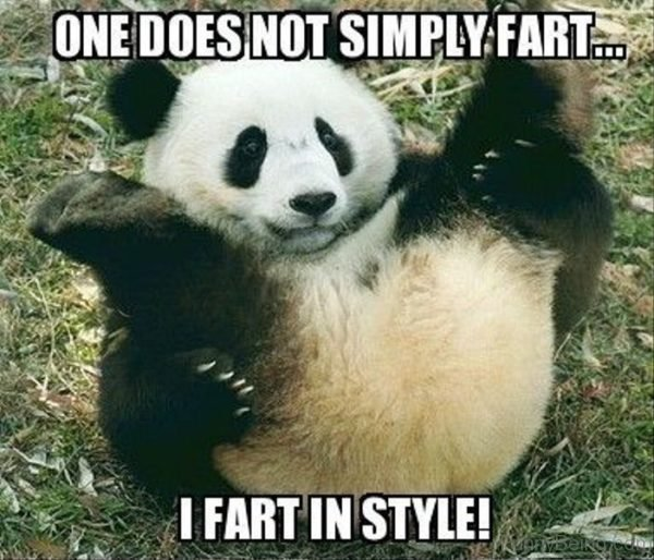 One Does Not Simply Fart