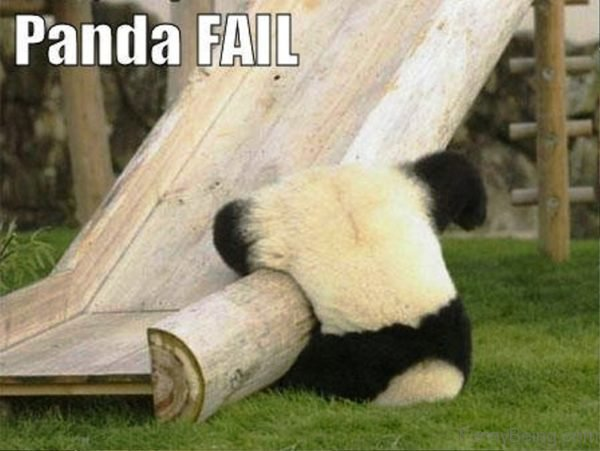 Panda Fail