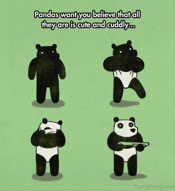 Pandas Want You Believe