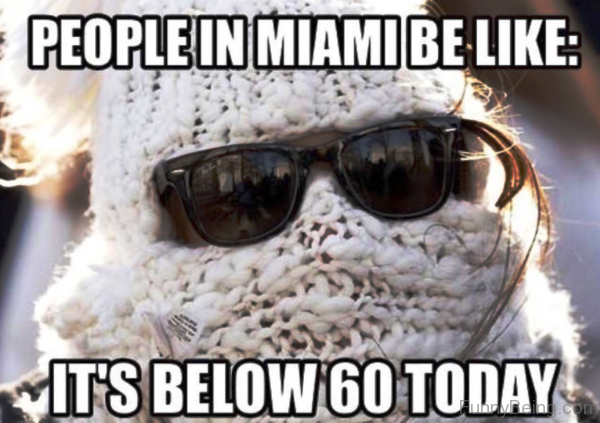 People In Miami Be Like