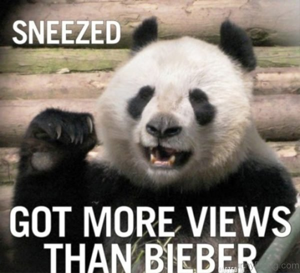 Sneezed Got More Views