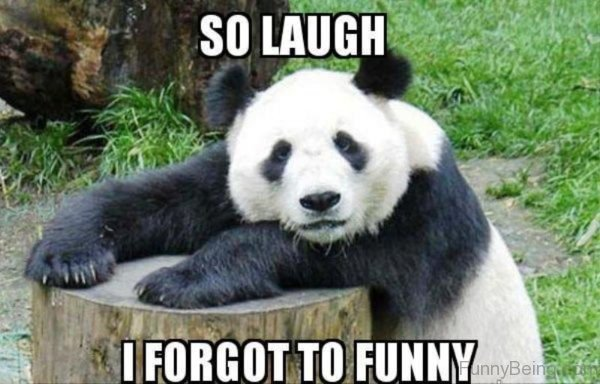 So Laugh I Forgot To Funny