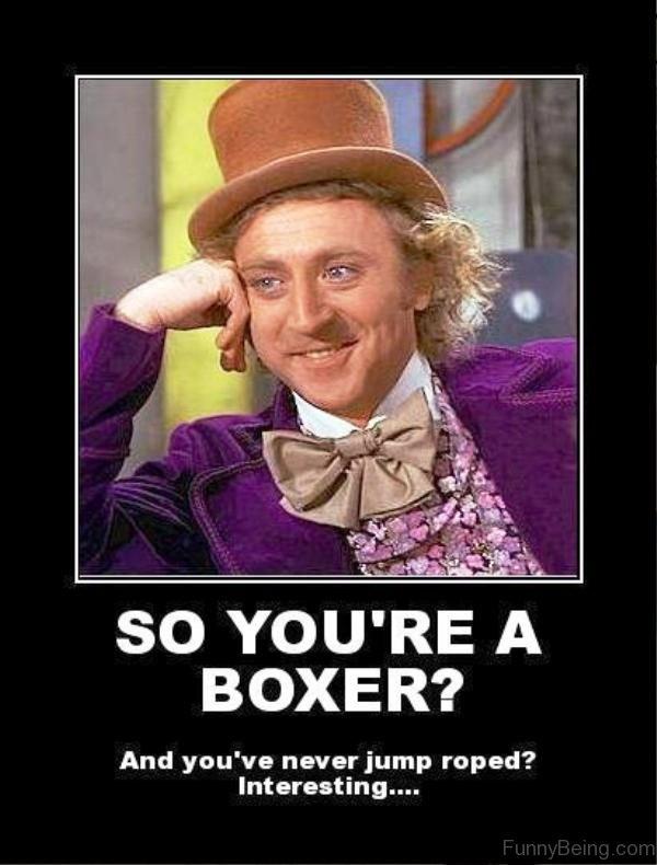 So You re A Boxer