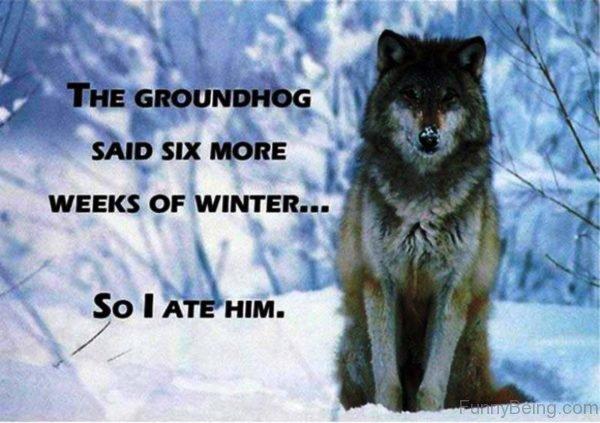 The Groudhog Said Six More