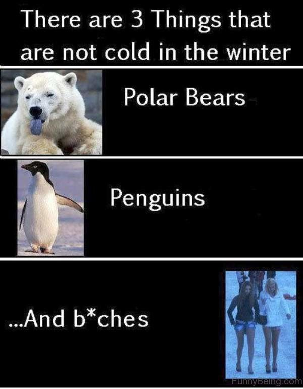 There Are 3 Things That Are Not Cold