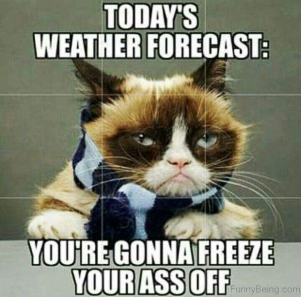 Todays Weather Forecast