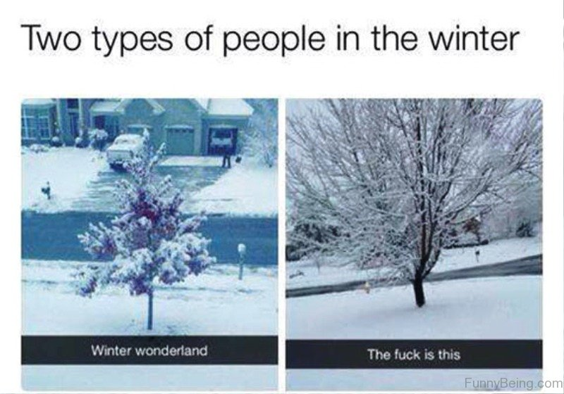 97 Funniest Winter Memes Ever