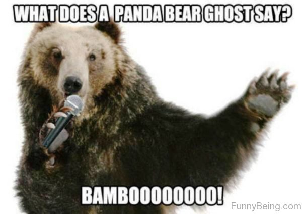 What Does A Panda Bear Ghost Say