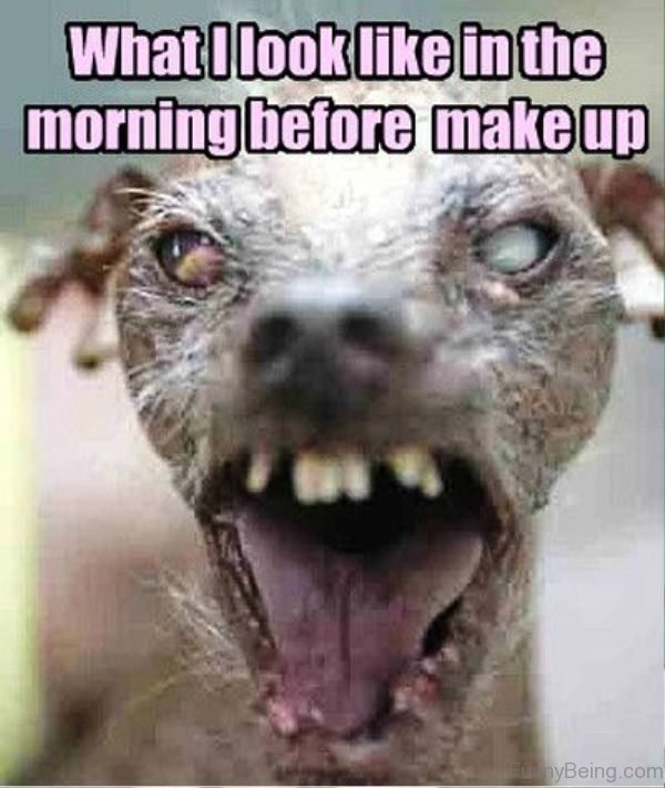 What I Look Like In The Morning