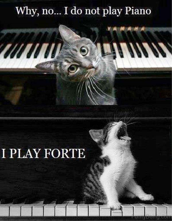 Why No I Do Not Play Piano