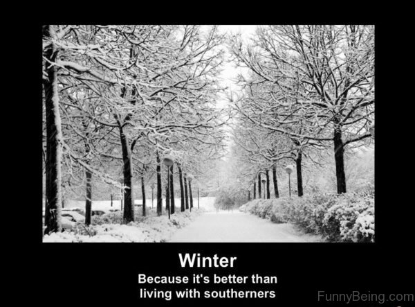 Winter Because Its Better Than Living