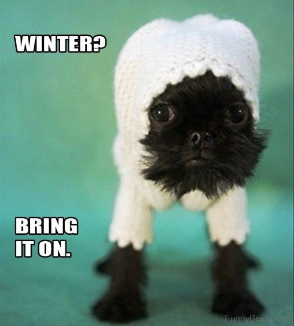Winter Bring It On