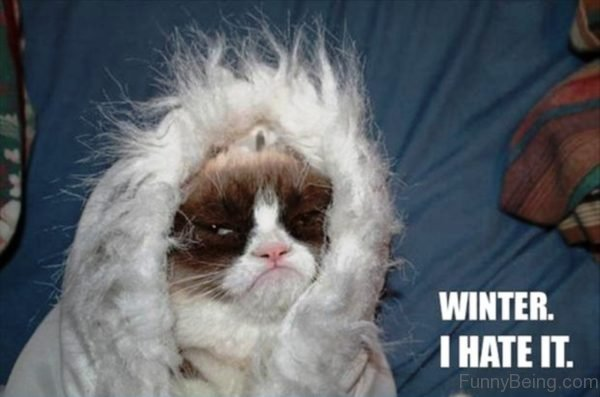 Winter I Hate It