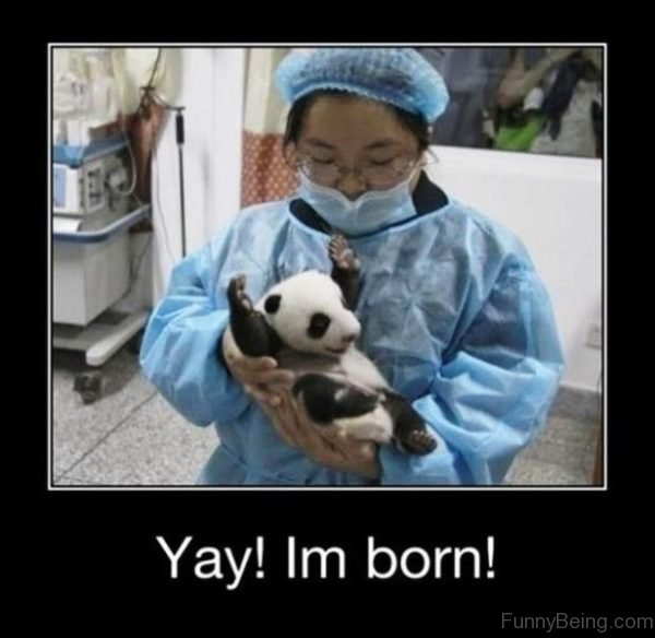 Yay Im Born