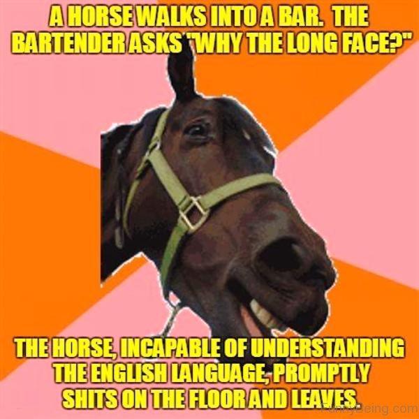 Dog Walks Like A Horse
