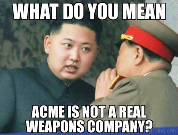 Acme Is Not A Real Weapons Company