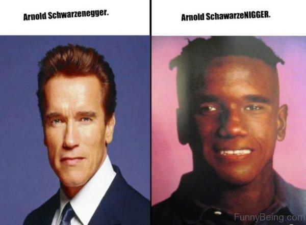 Arnold Schwarzenegger Vs Arnold Schawarzenigger