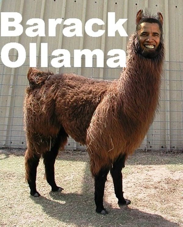 Barack Ollama