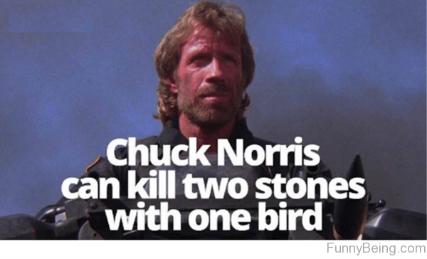 Chuck Norris Can Kill Two Stones