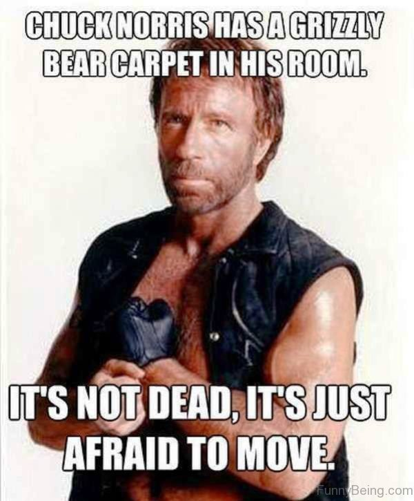 Chuck Norris Has A Grizzly Bear Carpet