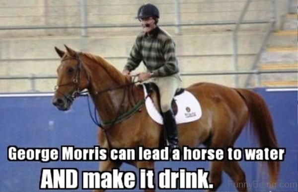 George Morris Can Lead A Horse To Water