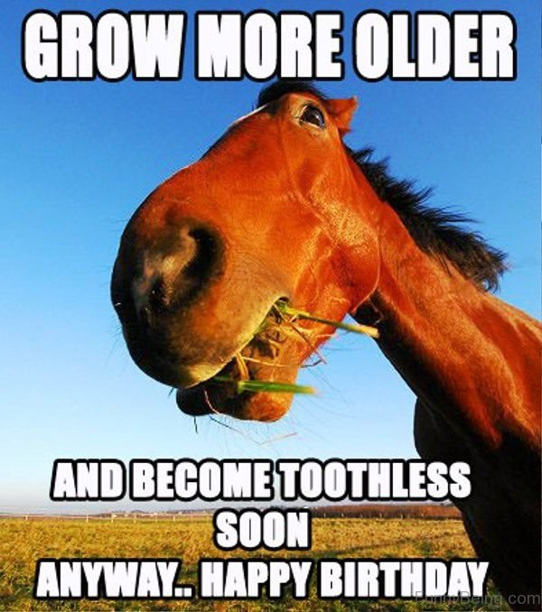 Grow More Older