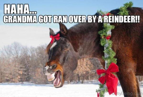 Haha Grandma Got Ran Over By A Reindeer