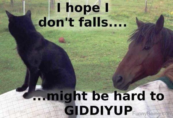 I Hope I Dont Falls