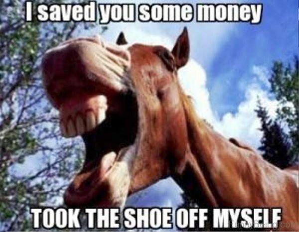 I Saved You Some Money