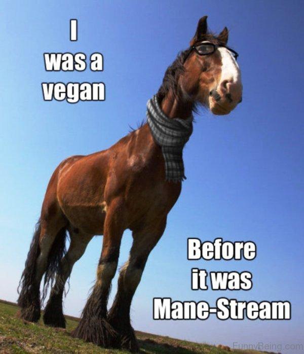 I Was A Vegan
