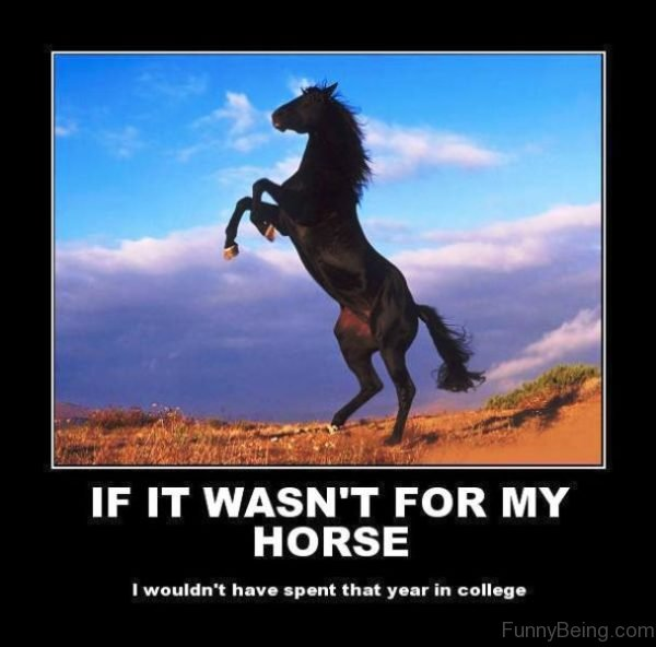 If It Wasnt For My Horse