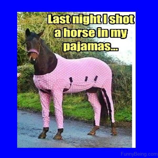 Last Night I Shot A Horse In My Pajamas
