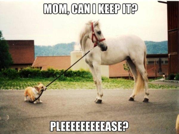 Mom Can I Keep It