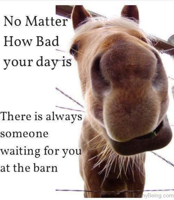 No Matter How Bad Your Day Is